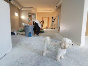 Mieszkanie pod klucz z projektem